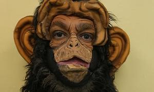 El mono que vino del hombre